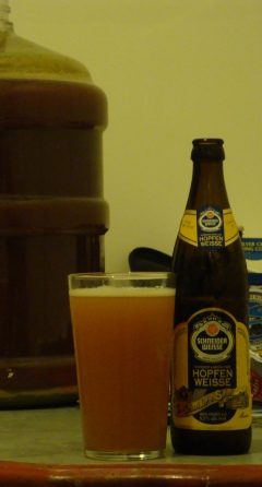 Schneider-Brooklyner Hopfen Weisse